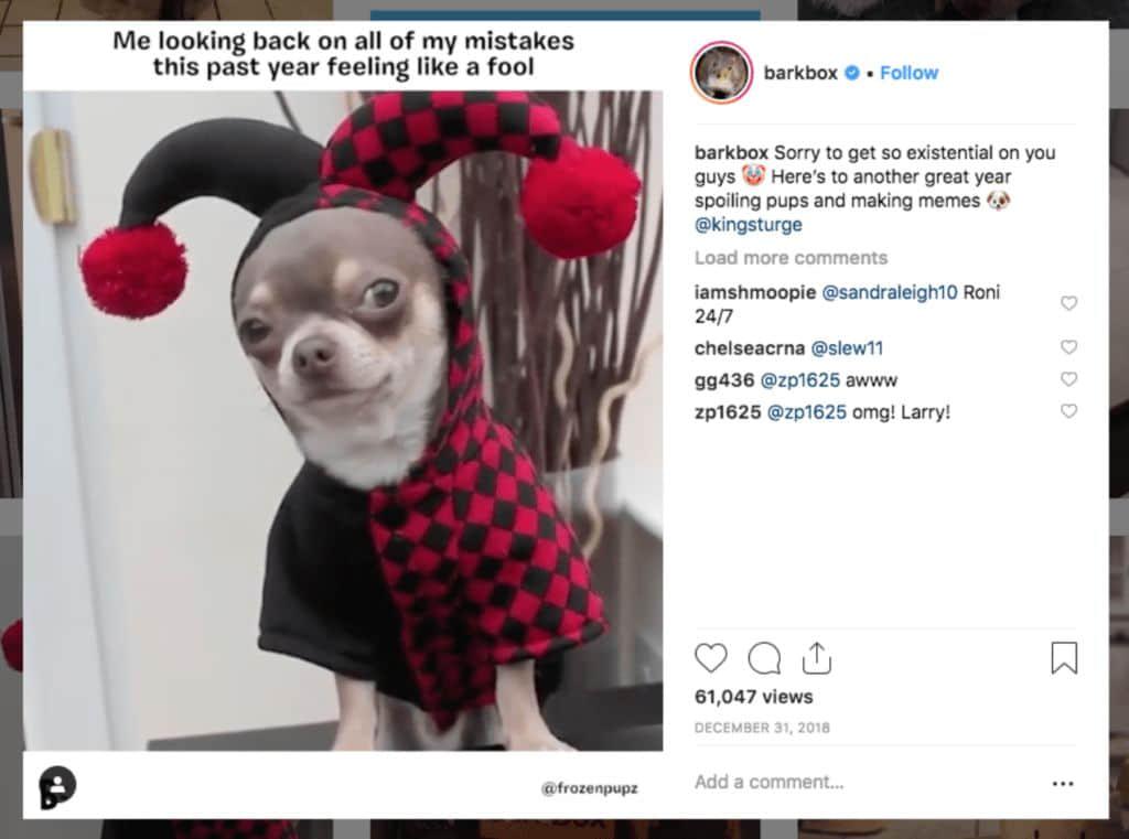 建立了自己的以狗为主题的品牌内容代理和影响力营销项目BarkPost