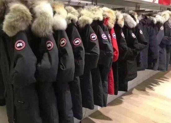 案例研究 | 加拿大鹅如何进行品牌和产品创新