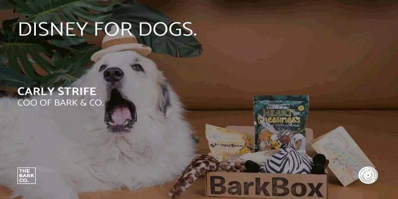 Barkbox宠物经济